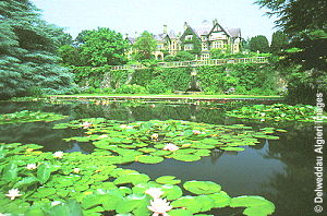 Photographs - Lily pond at Bodnant Gardens