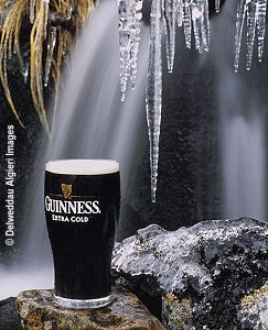 Photographs - Draught Guinness