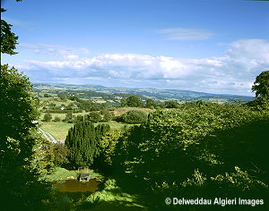 Photographs - Oakwood View Conwy