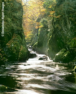 Photographs - Fairy Glen Betws-y-Coed