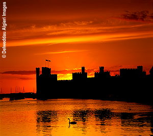 Photographs - Caernarfon Castle