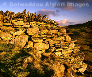 Photographs - Dry Stone Wall