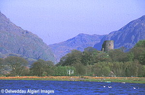 Photographs - Dolbadarn Castle