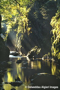 Photographs - Fairy Glen