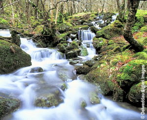 Photographs - Waterfalls Capel Curig