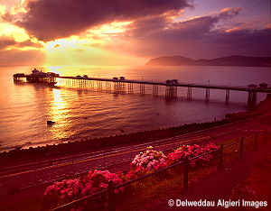 Photographs - Llandudno Pier at sunrise