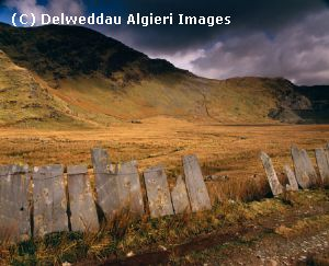 Photographs - Cwmorthin slate fence