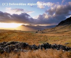 Photographs - Moelwynion
