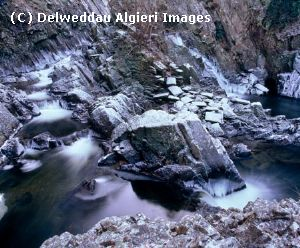 Photographs - Conwy Falls