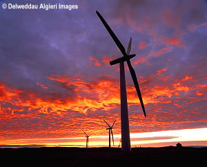 Photographs - Moelogen Wind Turbines at Sunrise