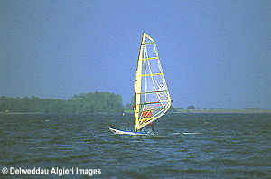 Photographs - Windsurfer