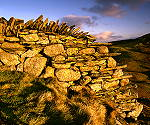 Dry Stone Wall - click here for more info