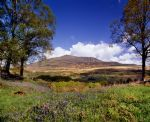 Moel Siabod - click here for more info